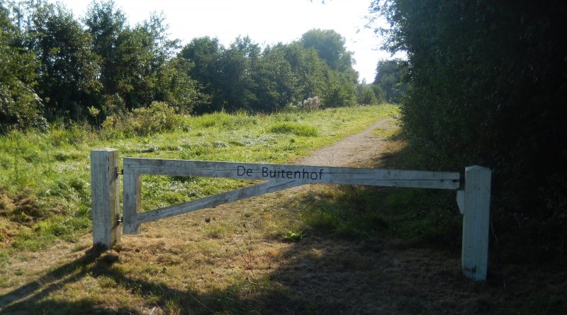 Buitenhof Maximapark