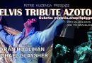 8 mei Elvis Tribute band in Leidsche Rijn
