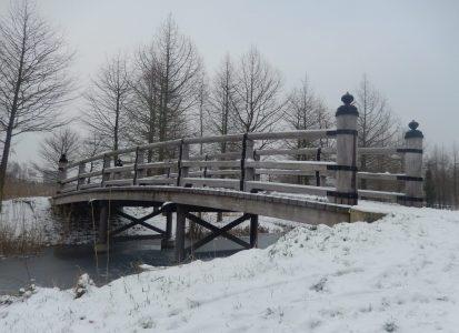 Houten japanse brug Maximapark Leidsche Rijn