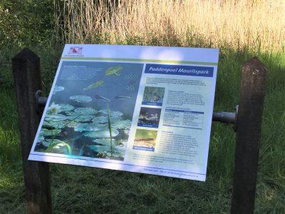 Paddenpoel Mauritspark De Meern