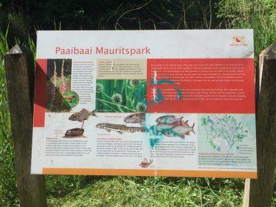 Paaibaai Mauritspark De Meern